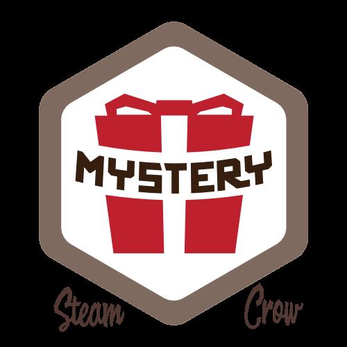 Mystery Box Badg
